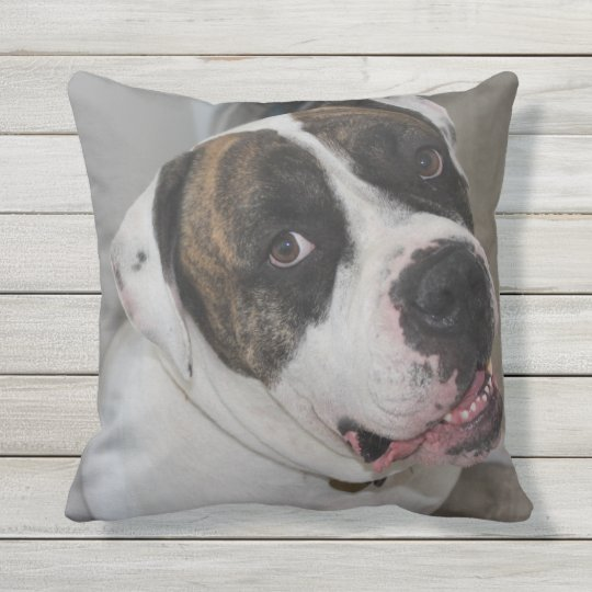Cushion 40.6 cm X 40.6 cm has to personalize