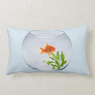 Cushion Goldfish