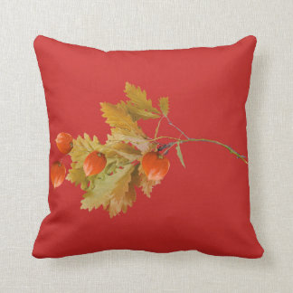 Cushion red bottom berries autumn oranges