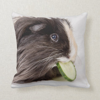 Cushion with cute guinea pig eating cucumber