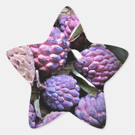 Custard Apple Cherimoya Star Stickers