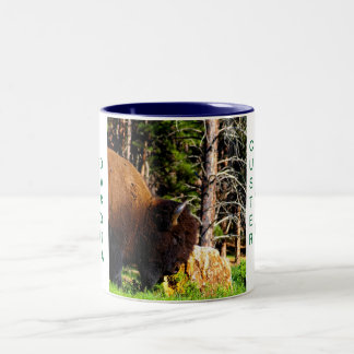 Custer State Park mug II