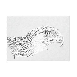 Custom (58.22cm x 41.76cm) Great Philippine Eagle Canvas Print