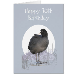 "Custom 70th Birthday ""Old Coot"" Funny Bird Humor Card"