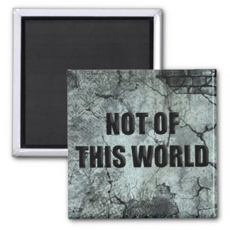 Custom Christian Not of This World Magnet