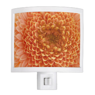 Custom coral flower photo night light for bedroom