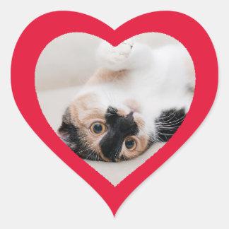 Custom Cute Funny Heart Shaped Cat Photo Sticker