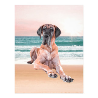 Custom Cute Great Dane Dog Sitting on Beach Letterhead