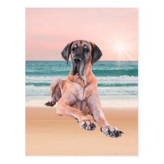Custom Cute Great Dane Dog Sitting on Beach Postcard