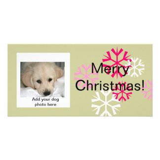 Custom Dog Christmas Photo Cards Pink Sage