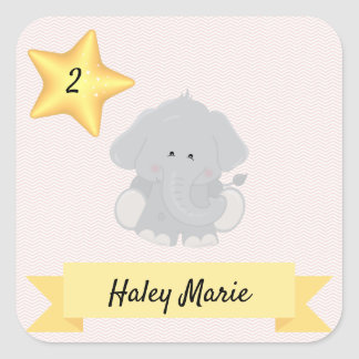Custom Elephant Chevron Stripes with Name and Age Square Sticker