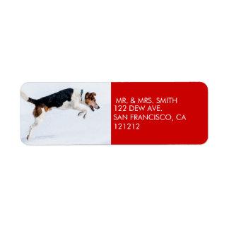 Custom Funny Unique Dog Christmas Return Address