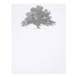 Custom Genealogy Oak Tree Stationary Letterhead