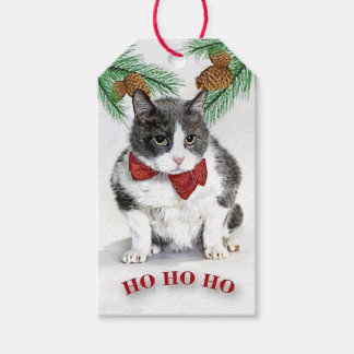 Custom Gift Tags featuring Grumpy Felix