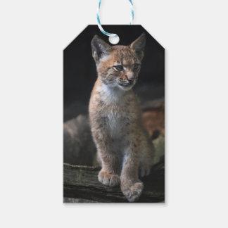 Custom Gift Tags with lynx face portrait