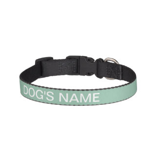 Custom Grayed Jade Stylish Color Matched Pet Collar