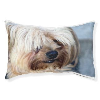 custom indoor dog bed---small pet bed