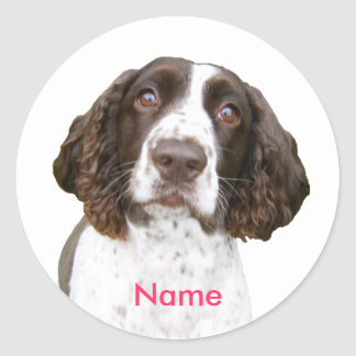 Custom Name English Springer Spaniel Stickers