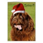 Custom Newfoundland Christmas card 2
