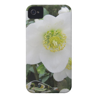 custom personalize do it yourself Anniversaries Case-Mate iPhone 4 Case