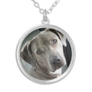 Custom Pet Memorial Photo Necklace - Silver