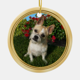 Custom Pet Ornament with Your 2 Pet PHOTOS