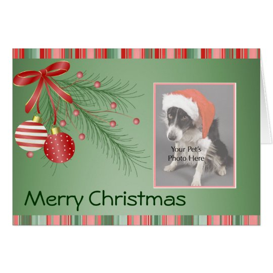 Custom Pet Photo Christmas cards