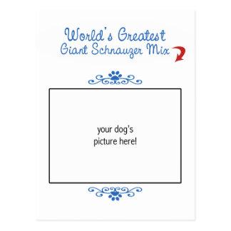 Custom Photo! Worlds Greatest Giant Schnauzer Mix Postcard