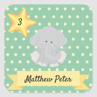 Custom Polka Dot Elephant with Name and Age Square Sticker