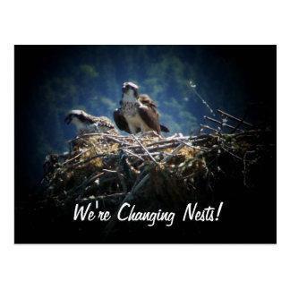 Custom We're Changing Nests New Home Bird Nest Postcard