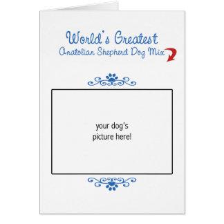 Custom Worlds Greatest Anatolian Shepherd Dog Mix Greeting Card