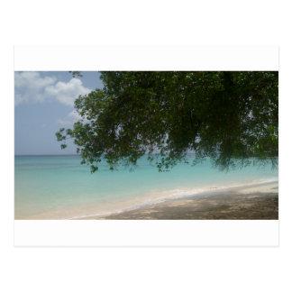 Customisable Barbados Beach Postcard