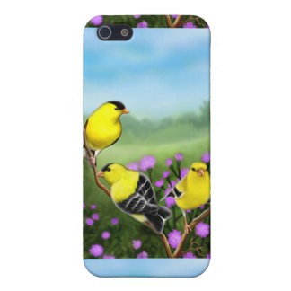 Customizable American Goldfinches iPhone Case iPhone 5 Cover