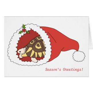 Customizable Angulate Tortoise Christmas Card