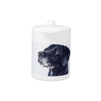 Customizable Black Labrador Retriever