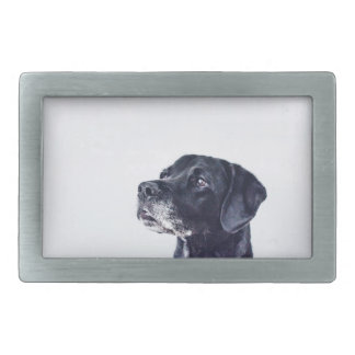 Customizable Black Labrador Retriever Belt Buckles