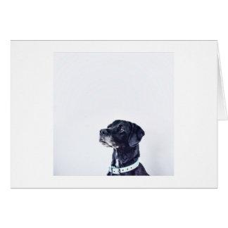Customizable Black Labrador Retriever Card