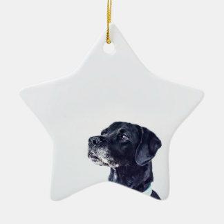 Customizable Black Labrador Retriever Ceramic Ornament
