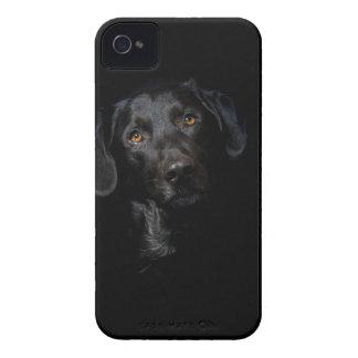 Customizable Black Labrador Retriever iPhone 4 Cases