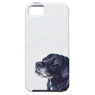 Customizable Black Labrador Retriever iPhone 5 Case
