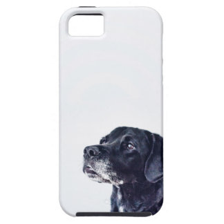 Customizable Black Labrador Retriever iPhone 5 Cover