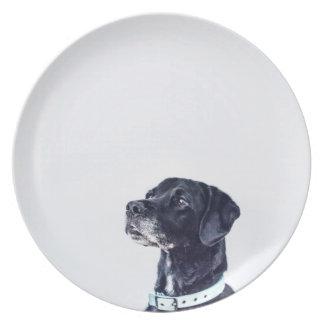 Customizable Black Labrador Retriever Plate
