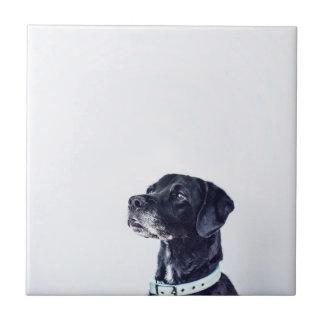 Customizable Black Labrador Retriever Tile