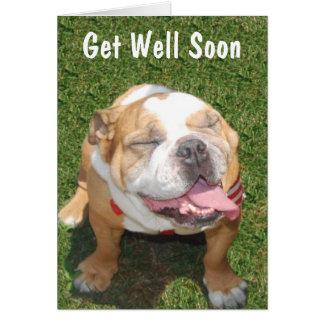 Customizable Bull Dog Get Well Card