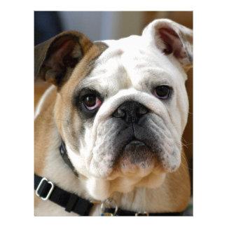 Customizable Bulldog Letterhead