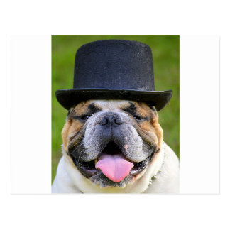 Customizable Bulldog Postcard