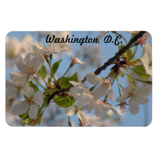 Customizable Cherry Blossoms Magnet
