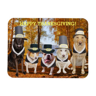 Customizable Cute/Funny Dogs Thanksgiving Magnet