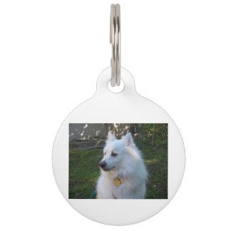 Customizable Large Pet Tag