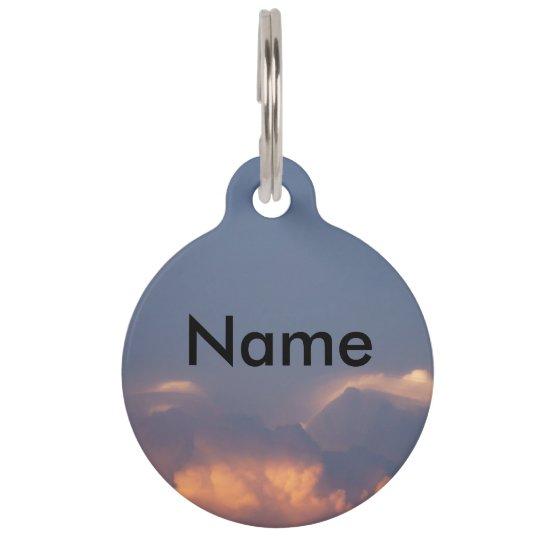 Customizable Name, Phone, Street, City, Pet Tag